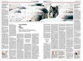 Die Presse, 2.November 2011